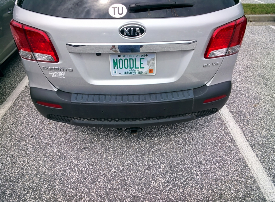 Moodle Plate